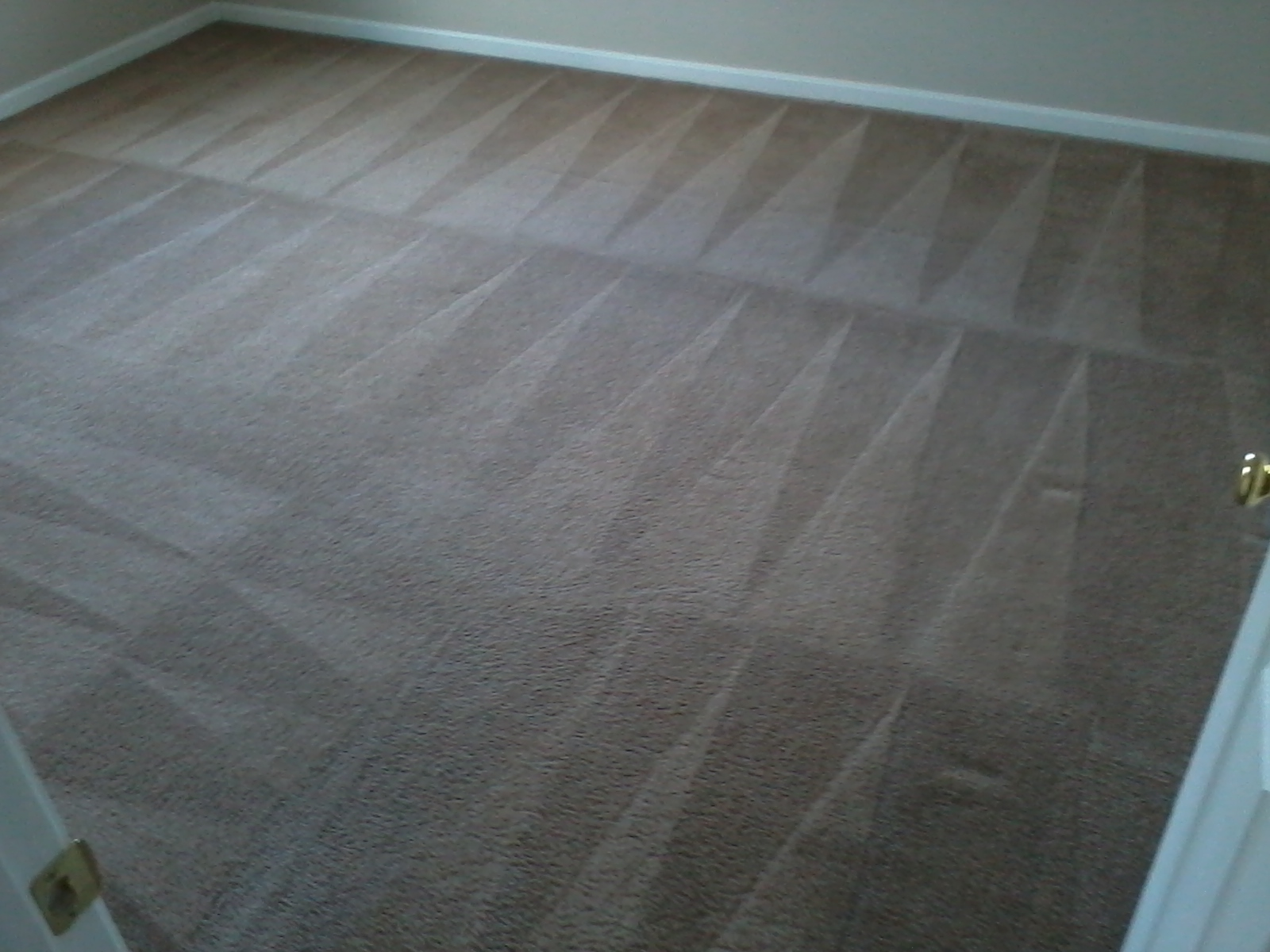 Carpet Cleaning Services Dover Delaware